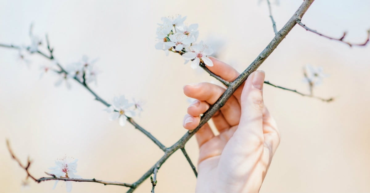 5 Ways to Celebrate New Life and Fresh Beginnings
