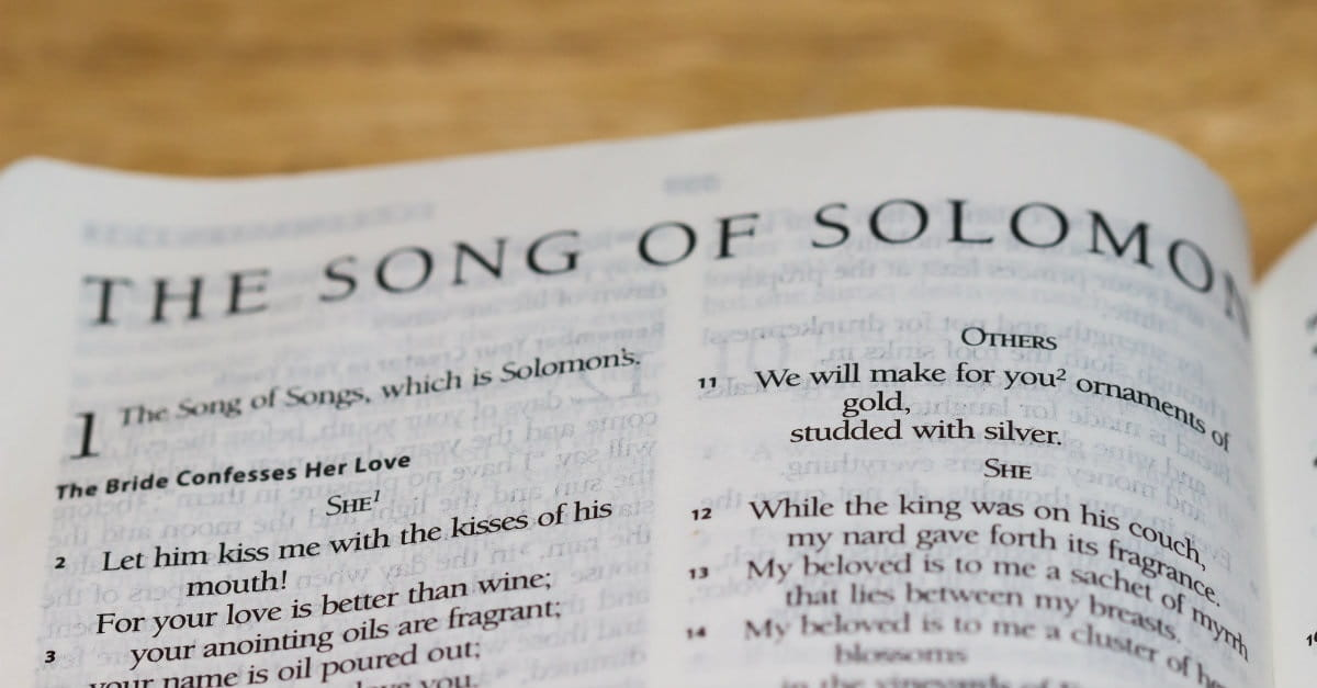2. Song of Songs is simply an allegory about Christ and the church.
