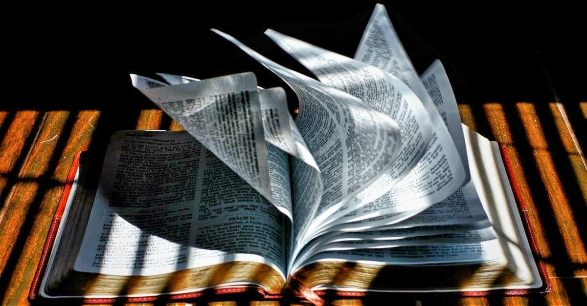 Intense bible study by mail
