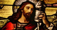 9. Confused Jesus