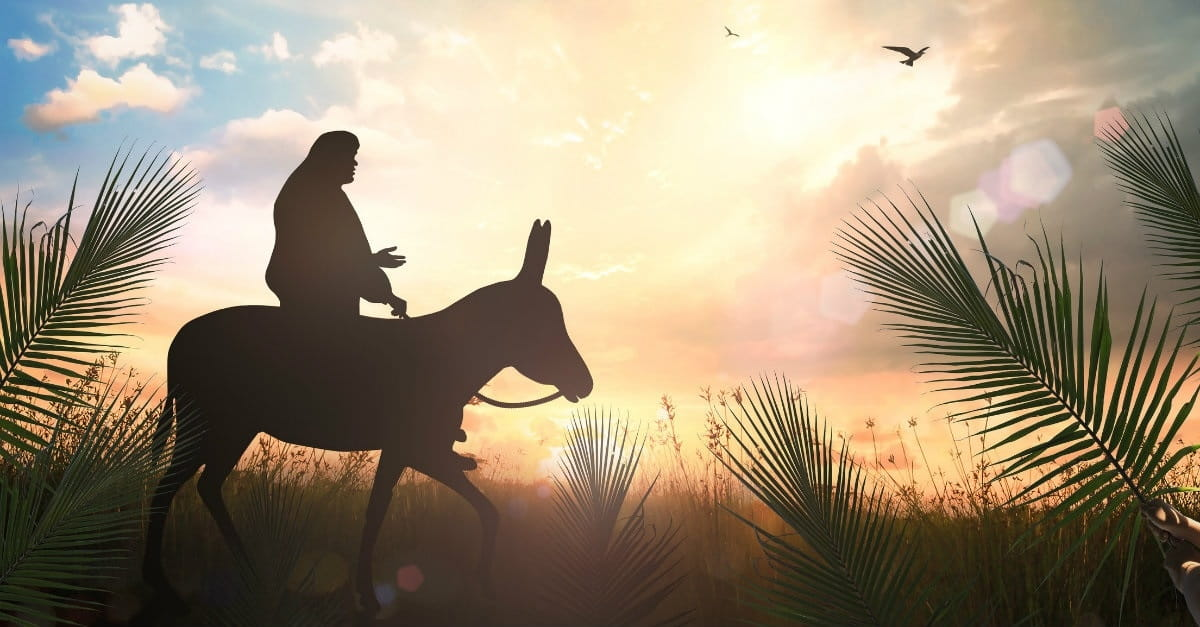 8 Things Most Christians Don't Understand about Jesus' Triumphal Entry