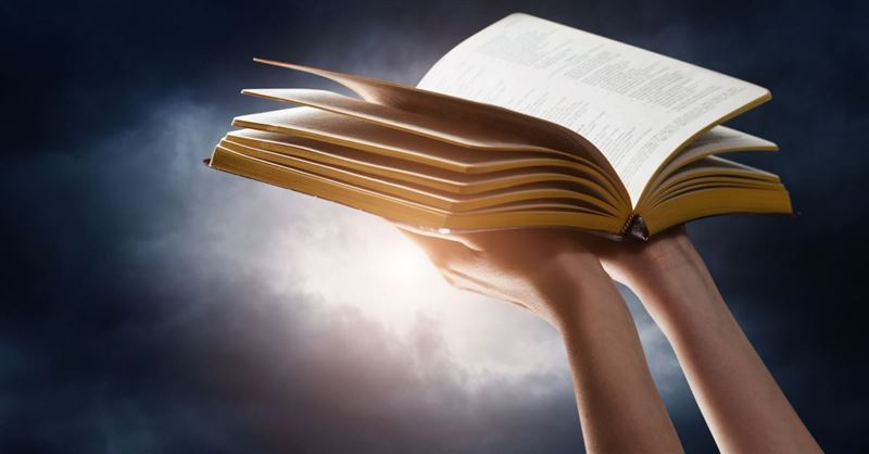 A Pastor's View of the Best, Surprising, and Worst Parts in Scripture