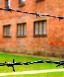 The Nuremberg Trials...and Homeschooling?!