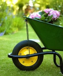Green Thumbs—Every Child Needs Two!