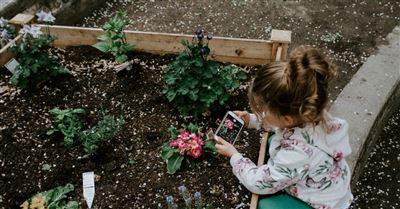 8. Plant a Garden
