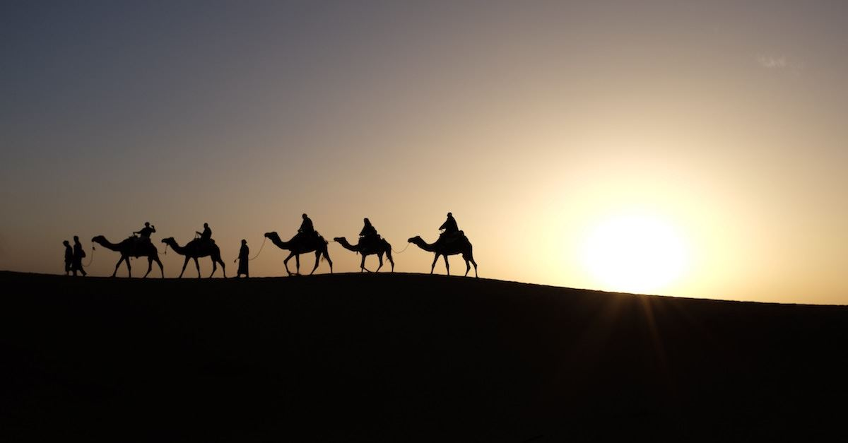 silhouettes of camels in desert, gold frankincense and myrrh