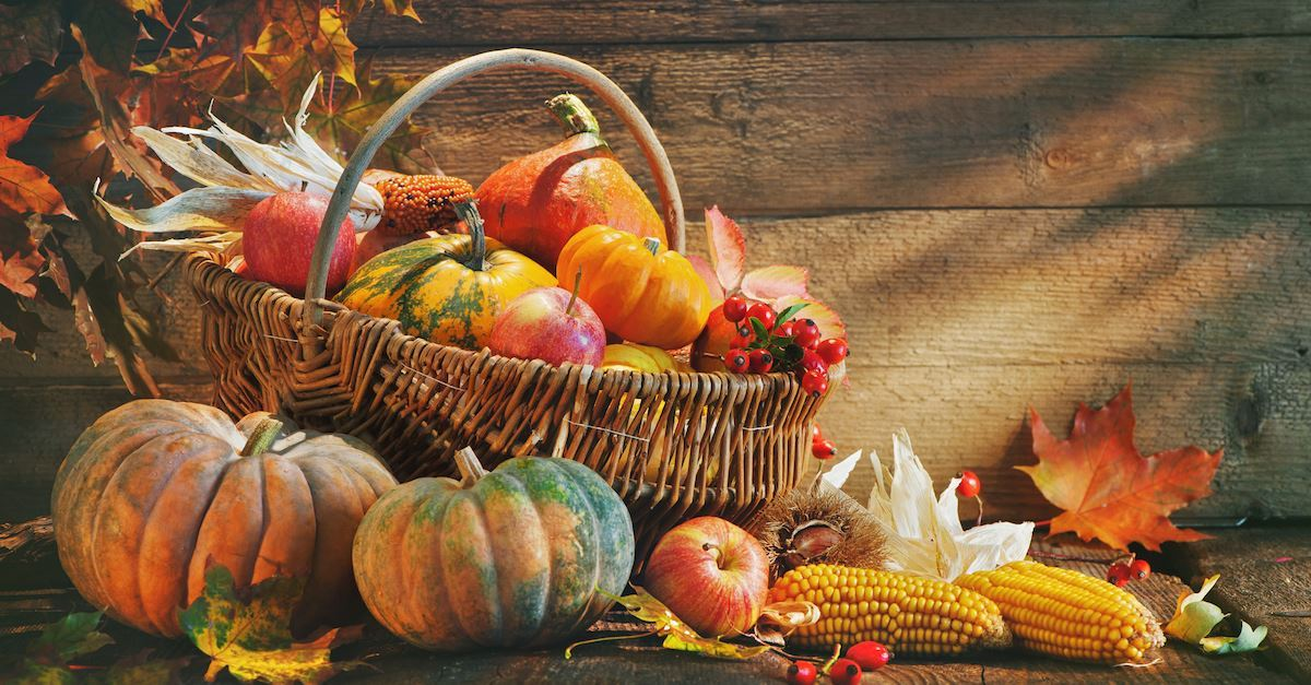 3 Short Thanksgiving Prayers & Blessings to Say before Your Meal