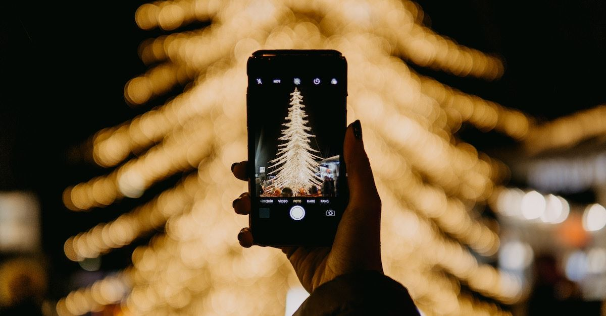 person taking picture of Christmas tree outside at night