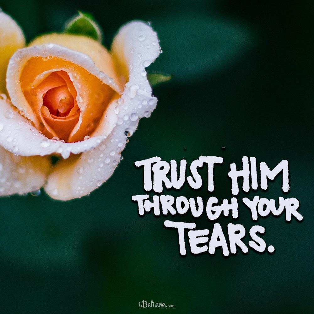Trust Him through Your Tears
