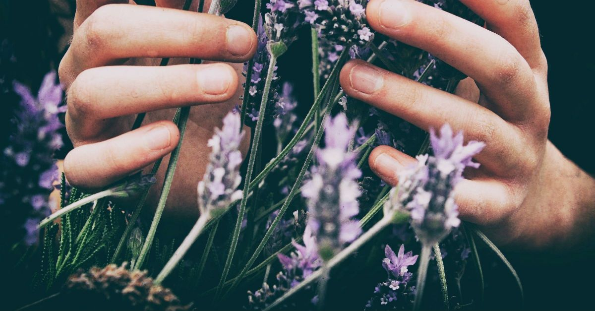 4 Reasons Why Tending a Garden is Good for Your Stressed Soul