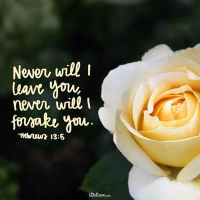 Your Daily Verse - Hebrews 13:5
