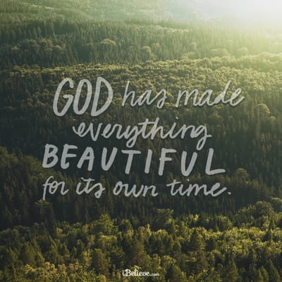 Ecclesiastes 3:11 - He has made everything beautiful in its