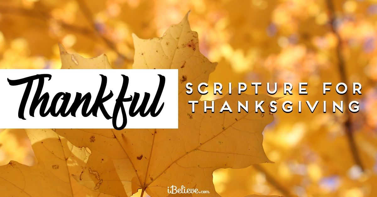 25 Heart-Warming Thanksgiving Bible Verses & Scriptures