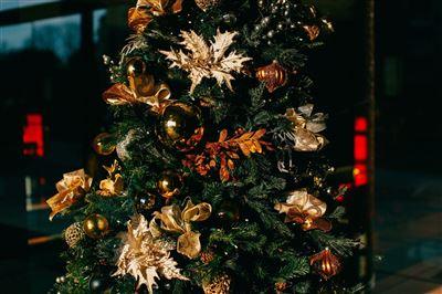 21 Christmas Bible Verses & Advent Scriptures to Celebrate the Season