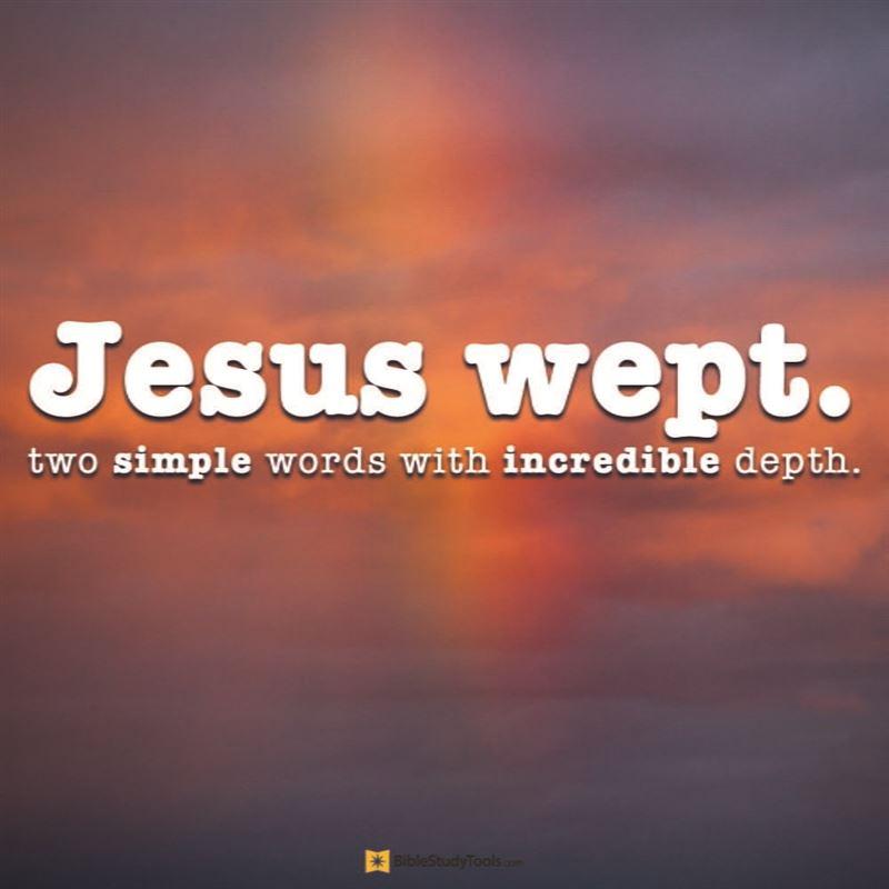 Image result for John 11:35