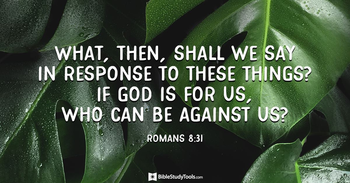 Your Daily Verse - Romans 8:31