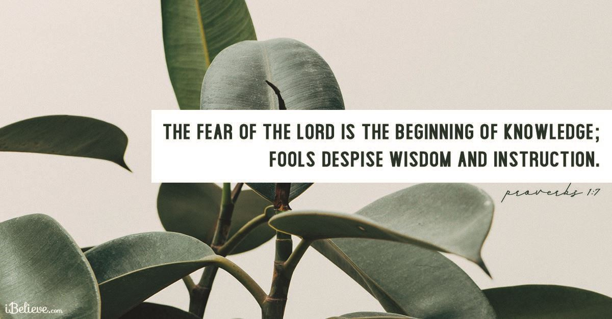 Proverbs for Accepting Wisdom