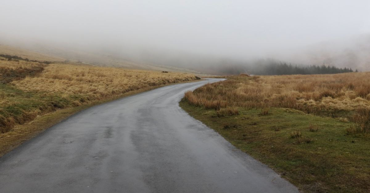 country road in mist and fog