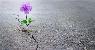 12 Hopeful Verses to Inspire You
