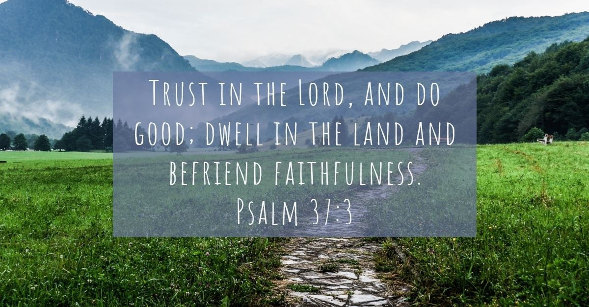 Your Daily Verse - Psalm 37:3