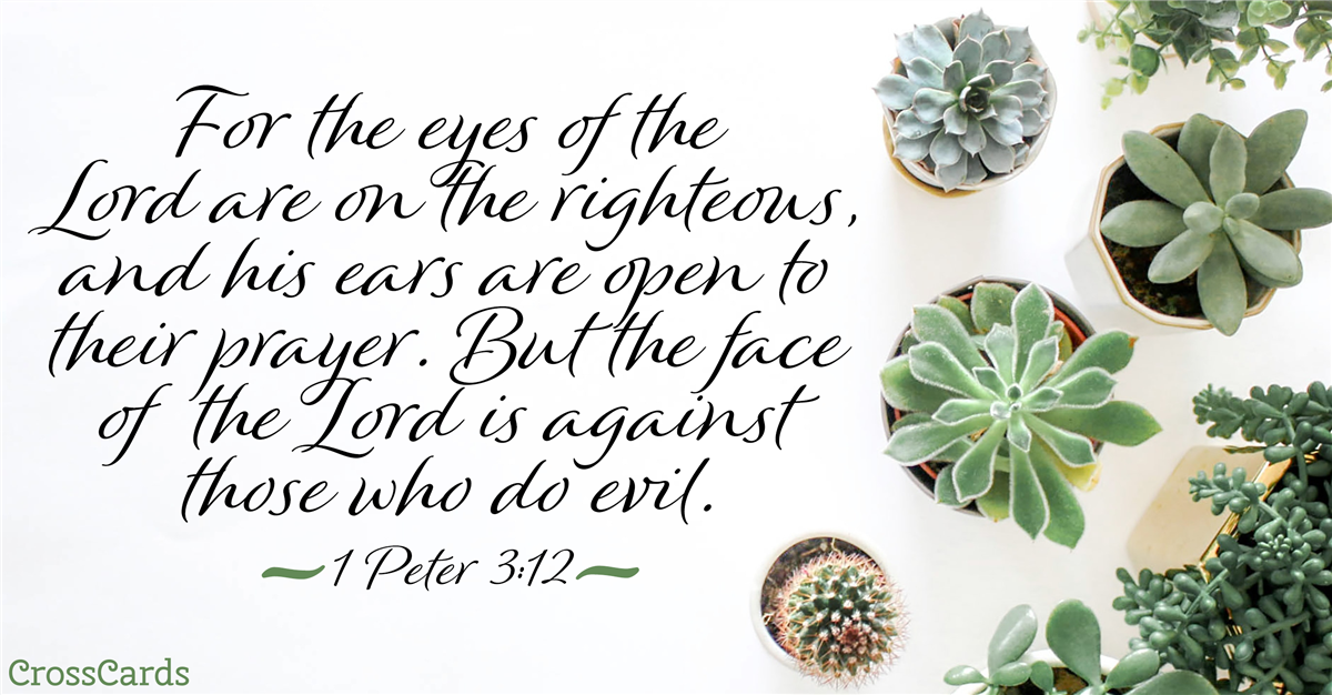 Your Daily Verse - 1 Peter 3:12