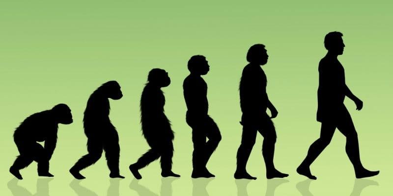 Evolutionists Kill Academic Freedom Bills in Four State Legislatures