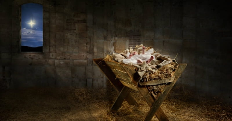 Beware the Hipster Nativity Set