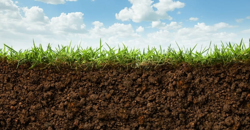 3. The earth needs a Sabbath to rest like we do.