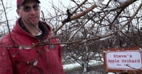 Farmer Ousted from Michigan Market over Same-Sex Marriage Views