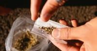 In Red-state Oklahoma, Marijuana Ballot Question Splits People of Faith