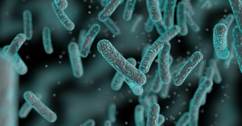 Swimming Bacteria Defy Darwin's Theory