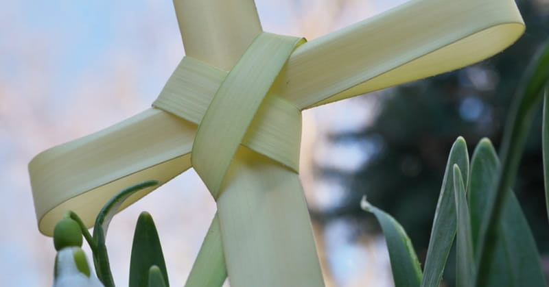 1. Palm Sunday - A Triumphal Entry and Beginning of The Holy Week