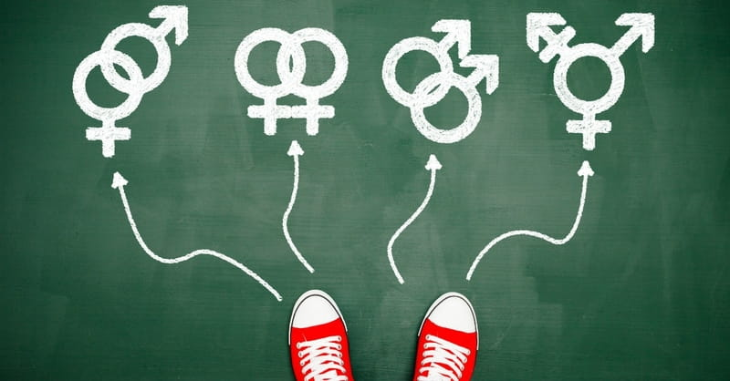Gender Ideology and Public Schools: These Are Our Kids