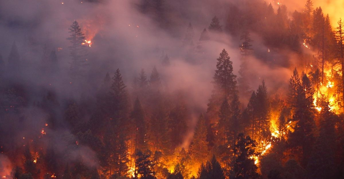 5 Things You Should Know about the California Wildfires