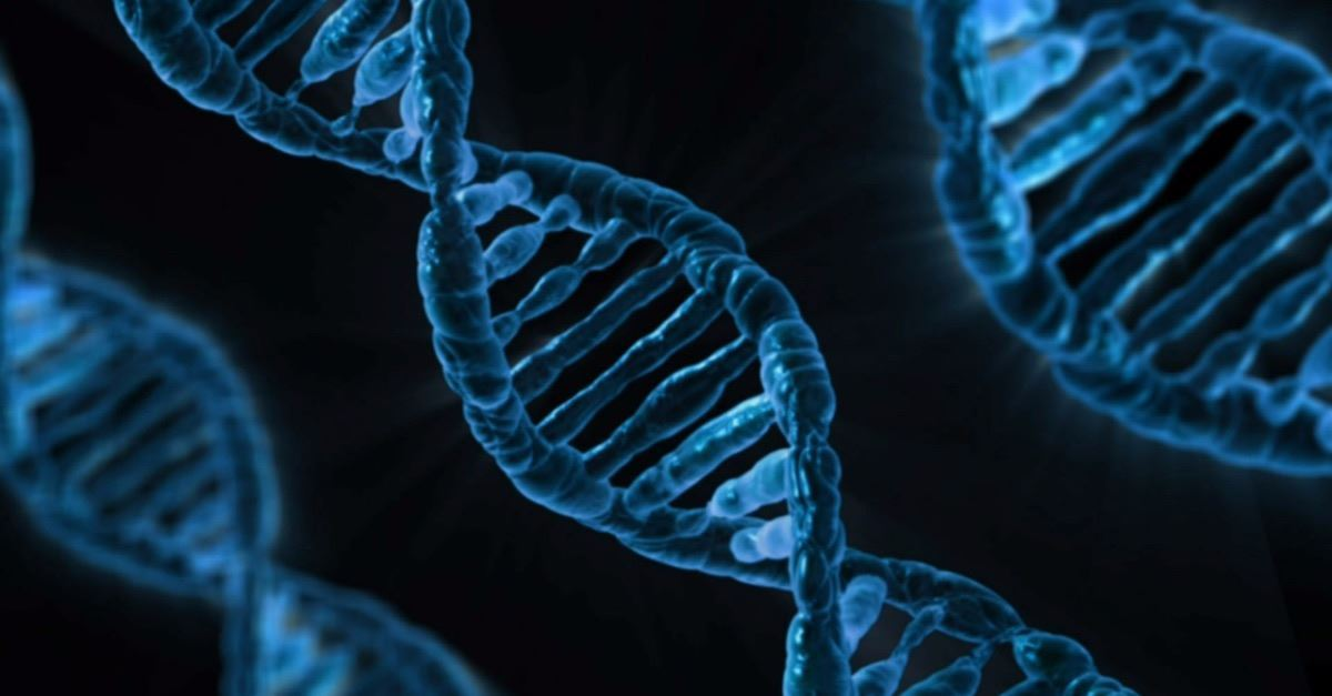 """Are We Really """"Shocked"""" Over Gene Editing?: Should Have Seen This Coming"""