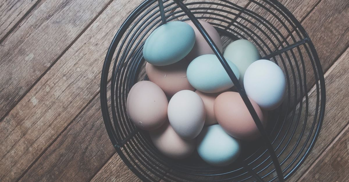 Argentine Teachers Give Students Easter Eggs with Pro-Abortion Slogans on Them