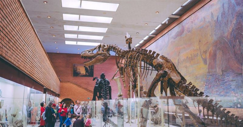 Buying a T. Rex and Restoring Notre Dame: Our Quest for Legacy