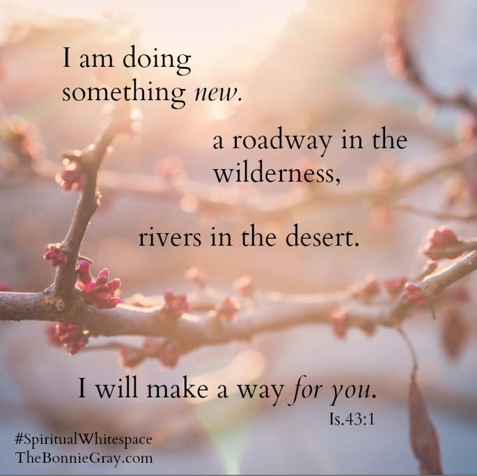 Lean In And Let God Make A Way For You Today A Lent Devotional