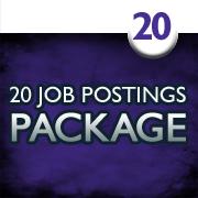 20 Job Postings (1 month each)