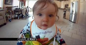 Life Seen thru the Eyes of an Adventurous Baby