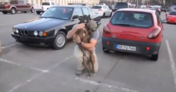 Soldiers Get Best Welcome Home from their Furry Friends