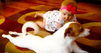 I Don't Know Who's Cuter – The Crawling Baby Or The Pup That's Trying To Teach Her!