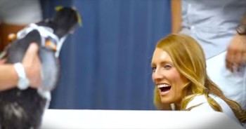 You'll Be Waddling For Joy After This Precious Penguin-Themed Proposal – SO Cute!