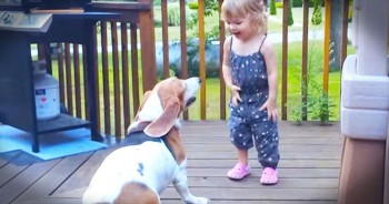 These 2 BFFs Are The CUTEST Dancing Partners Ever – And I'm Loving Every Second!