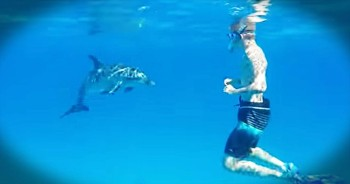 I Don't Know What's Better, The Friendly Dolphin Or The Giggling Snorkler! So Sweet!