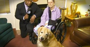 When This 76-Year-Old Fell, She Was Stuck For 2 Days. Until 2 Furry Angels Saved The Day!