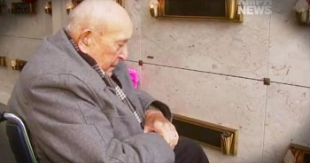 Man Returns To God After Witnessing Flowers For Deceased Wife Turning Purple
