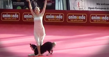 Precious Pup And Her Human Perform Talented Ballet Dance