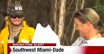 Firefighters Save Kitten From Brush Fire During Live TV Report