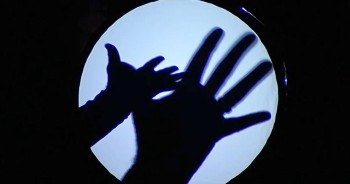 Amazing Hand Shadow Performance Will Have You Laughing For Days!